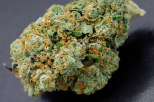 deadhead og close up