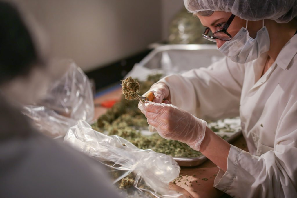 remedy cannabis mersadies