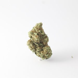 bio jesus nug against white background
