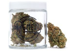 gelato strain in remedy glass jar